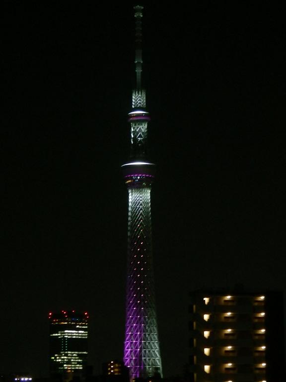 0517_3.jpg