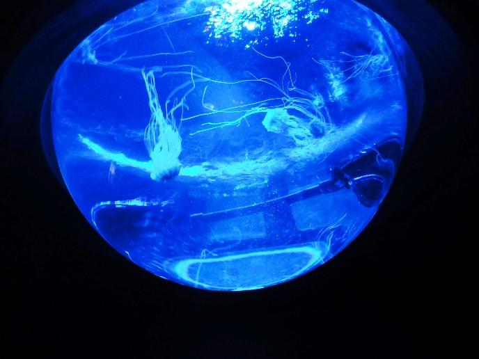 サンシャイン水族館水槽06.jpg