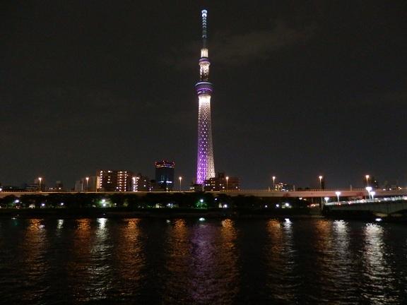 スカイツリー言問橋.jpg